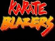 karate libre