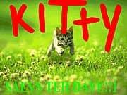 KITTY SAEVS TEH DAY