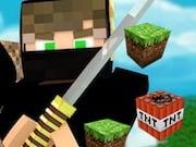 Minecraft Ninja