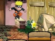 Naruto Homeland