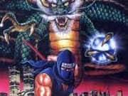 Ninja Ryukenden 2