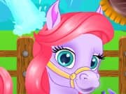 Juego Pretty Pony Grooming