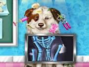 Rescate del Perro Mascota