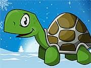 Turtle Go Adventure